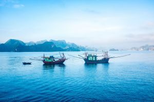 Vietnam - north to south - by Ruth McAllister Kemp