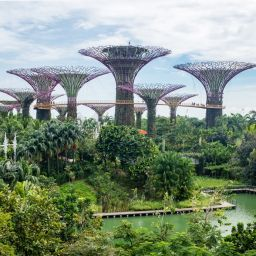 Singapore - what do you know? by Ruth McAllister Kemp