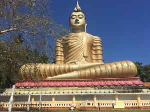 Your questions answered - Sri Lanka - by Ruth McAllister Kemp